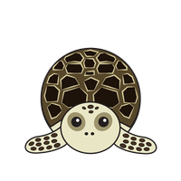 Link to animaru Hawksbill Turtle