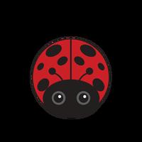 Link to animaru Ladybird