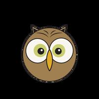 Link to animaru Little Owl