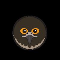 Link to animaru Peregrine Falcon