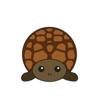 Link to animaru Turtle