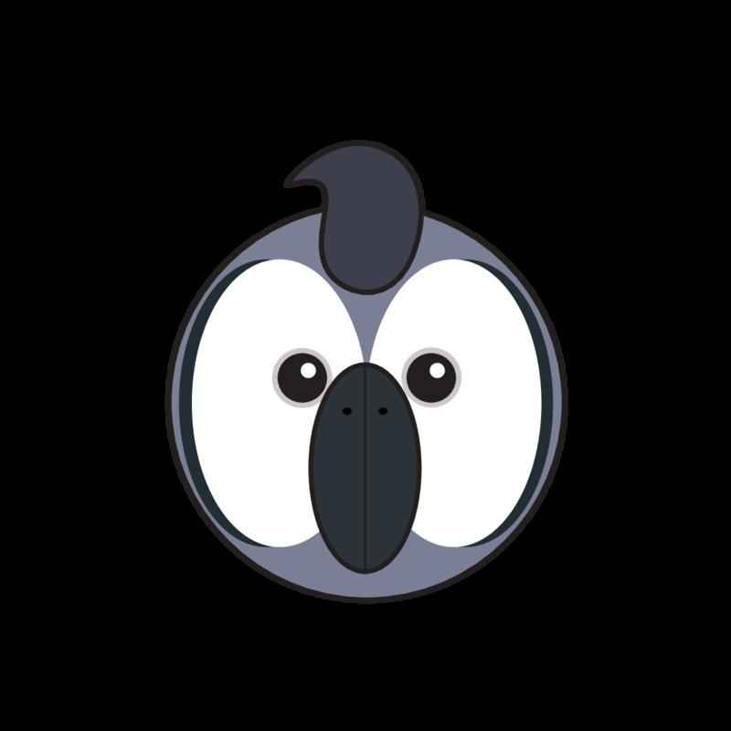 animaru African Grey Parrot