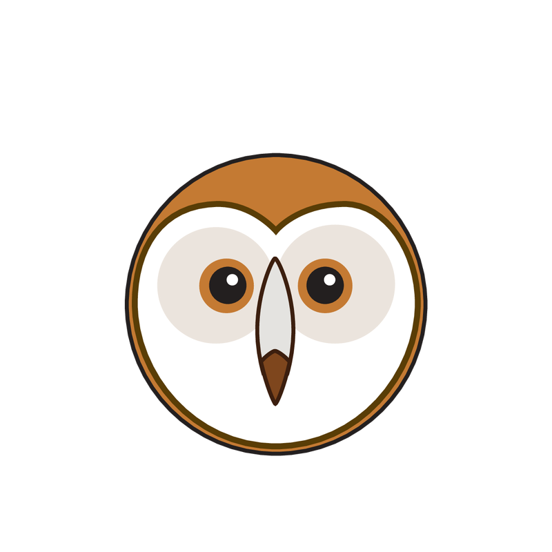 animaru Barn Owl