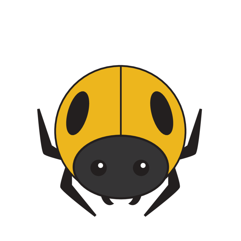 animaru Beetle