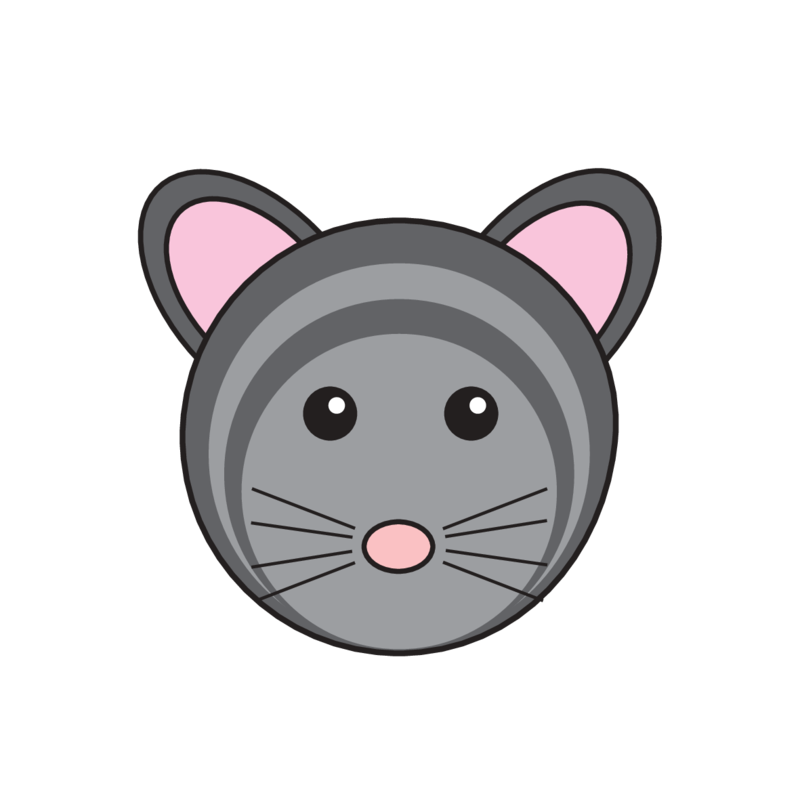 animaru Chinchilla