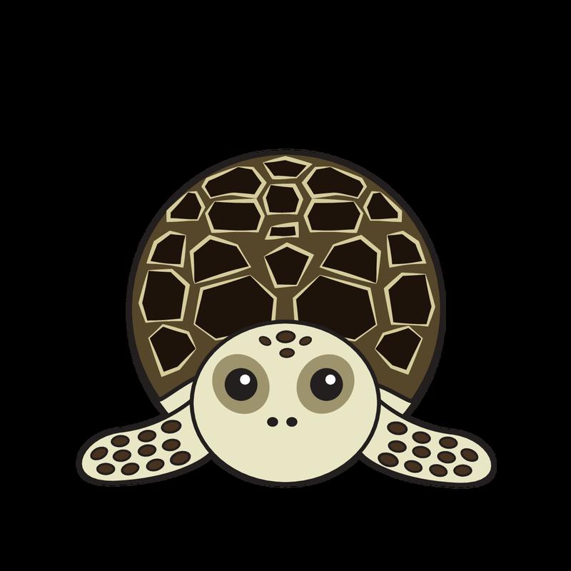 animaru Hawksbill Turtle