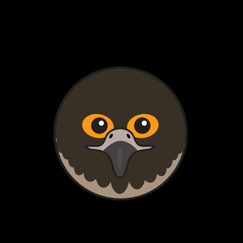 animaru Peregrine Falcon