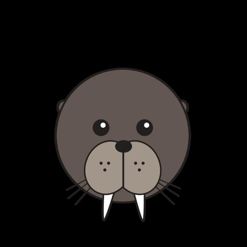 animaru Walrus